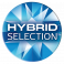 Hybrid Selection Logo