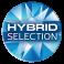 Hybrid Selection Logo